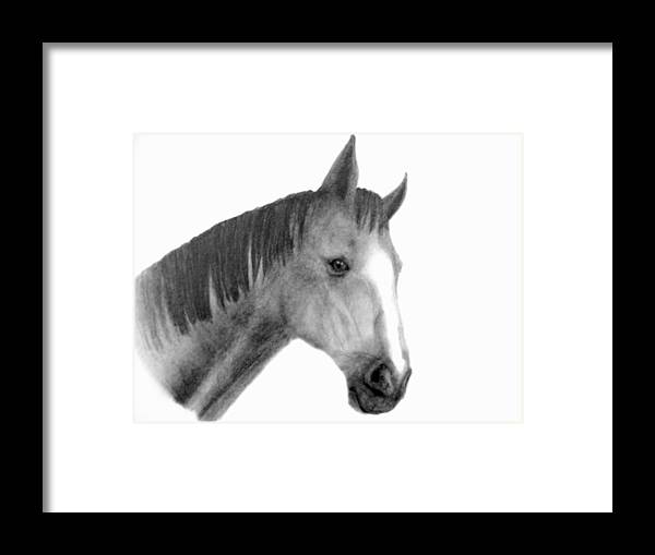 Pencil Drawing Framed Print featuring the drawing Jess by Susan Tilley