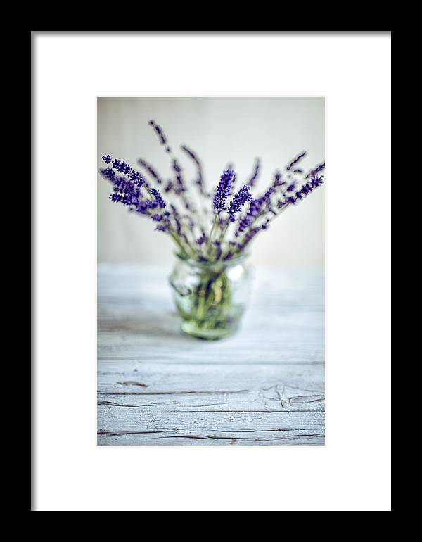 Lavender Framed Print featuring the photograph Lavender Still Life by Nailia Schwarz