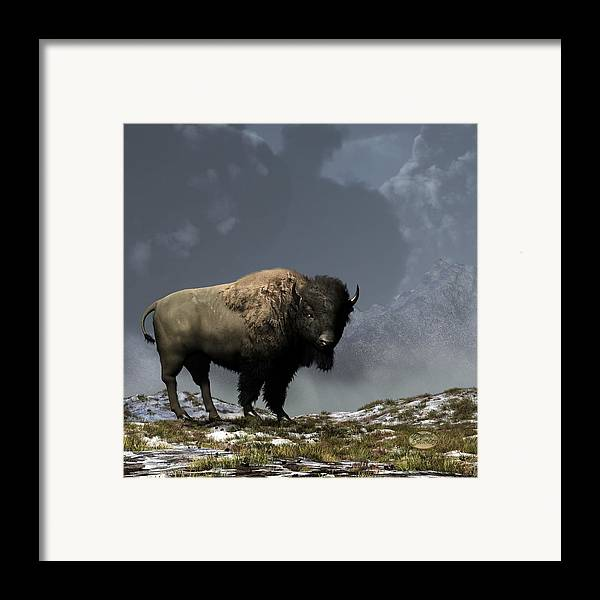 Bison Framed Print featuring the digital art Lonely Bison by Daniel Eskridge