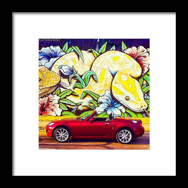 Caroftheday Framed Print featuring the photograph Love Him, But His Days With Our Crazy by Austin Tuxedo Cat