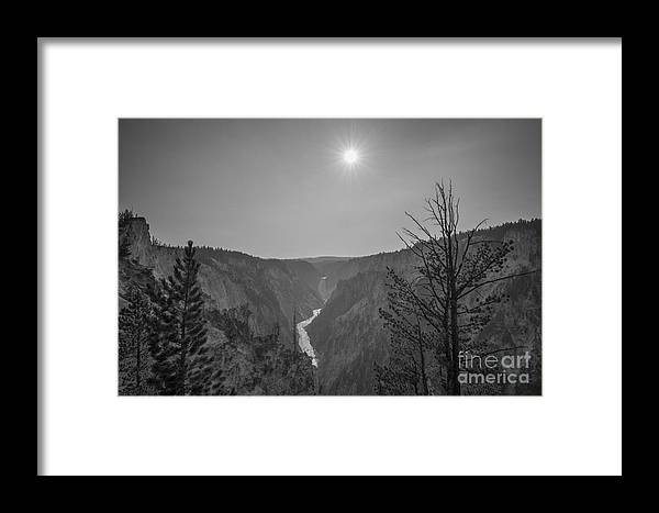 Yellowstone Framed Print featuring the photograph Lower Yellowstone Falls by Michael Ver Sprill