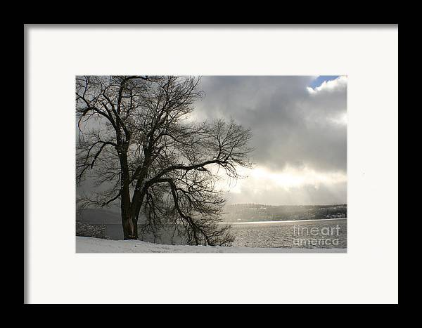 Lake Framed Print featuring the photograph Luminescence by Idaho Scenic Images Linda Lantzy