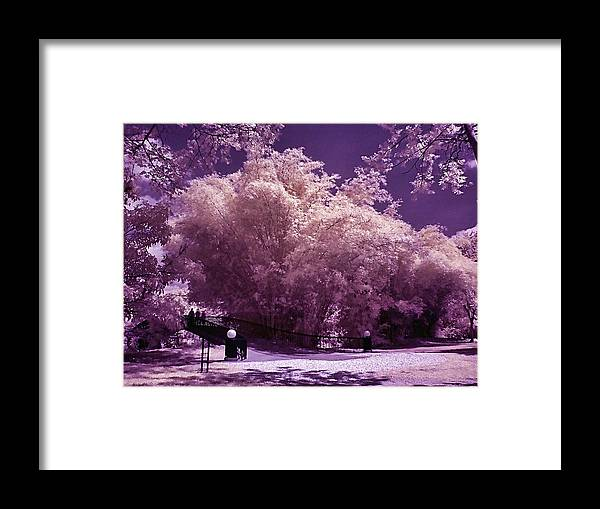Landscape Framed Print featuring the photograph Magic Garden by Galeria Trompiz