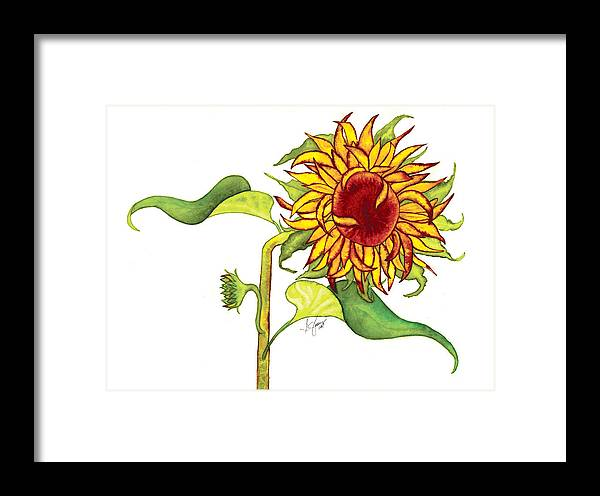 Floral Framed Print featuring the painting Mari's Sunflower by Stephanie Jolley