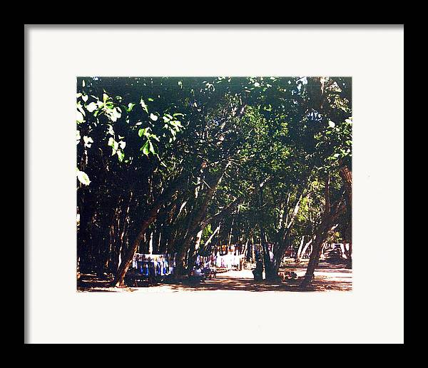 Trees Framed Print featuring the photograph Mayan Tapestry by Jennifer Ott