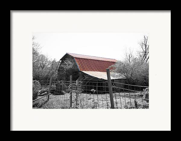 Framed Print featuring the photograph Mcdonald 3 by Lisa Johnston
