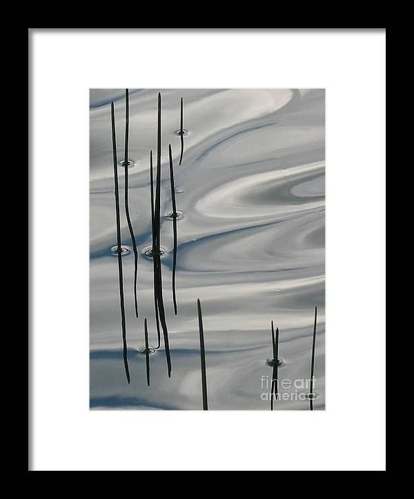 Swirling Framed Print featuring the photograph Mesmerized by Idaho Scenic Images Linda Lantzy