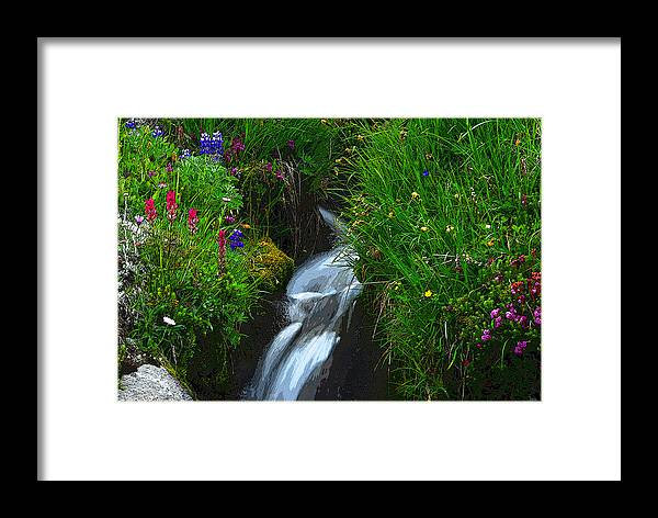 Art Framed Print featuring the painting Mountain Stream by David Lee Thompson