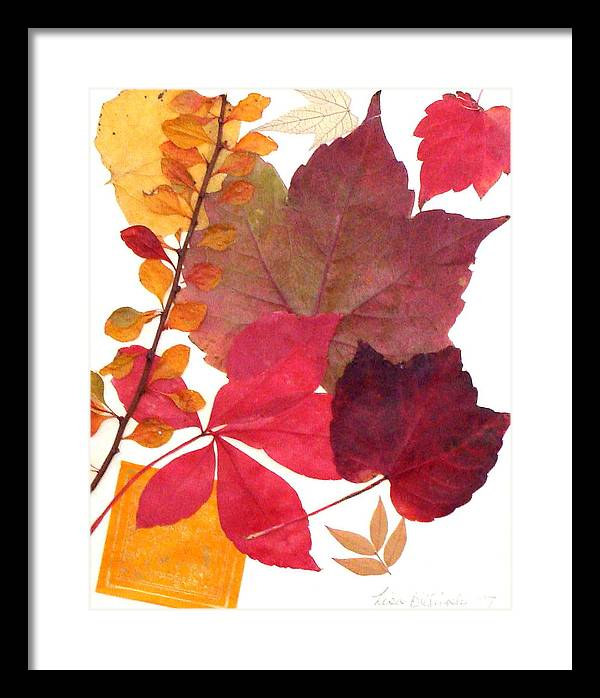 Fall Framed Print featuring the mixed media My Colors by Lisabeth Billingsley