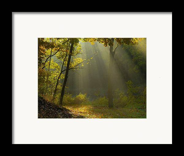 Sun Rays Framed Print featuring the photograph Mystic Morning by Neil Doren