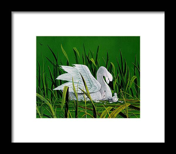 Swan And Babies Framed Print featuring the painting New Addition by Don Griffiths