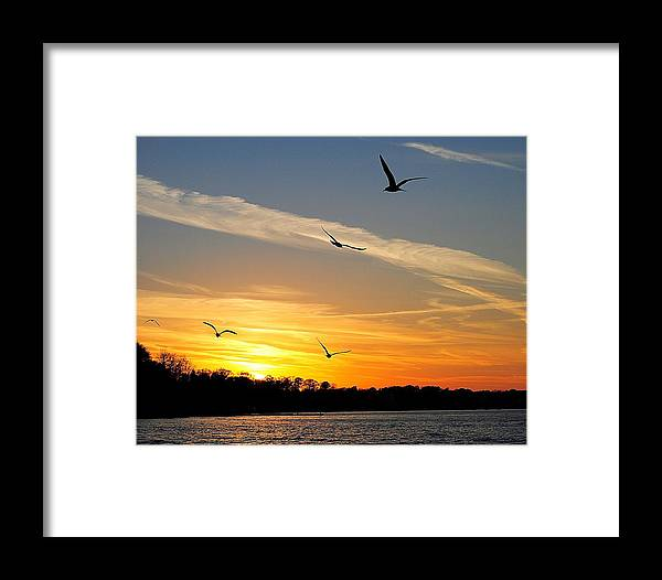 Lake Framed Print featuring the photograph November Sunset by Frozen in Time Fine Art Photography