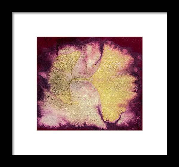 Jan Framed Print featuring the photograph Number 53 by Jan Durham