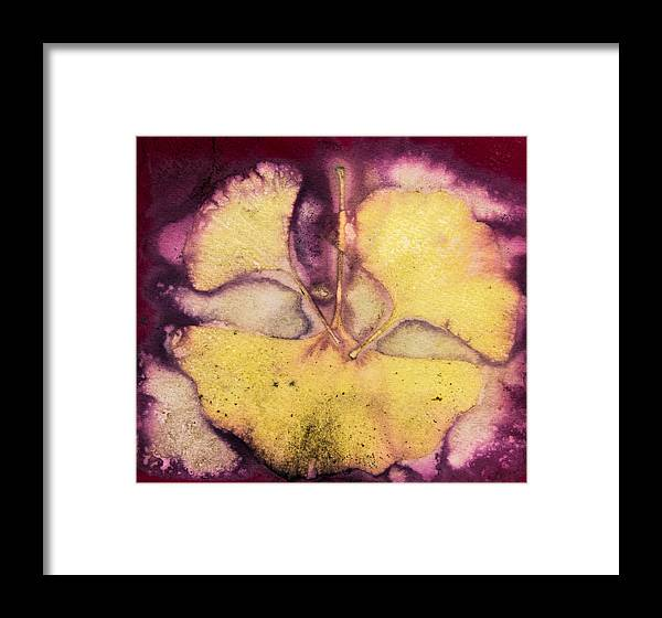 Jan Framed Print featuring the photograph Number 54 by Jan Durham