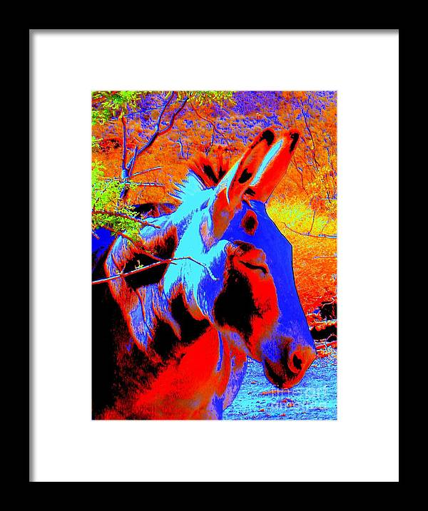 Burro Framed Print featuring the photograph Oatman Burro by Lessandra Grimley