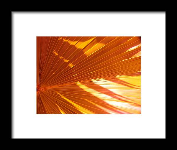 Abstract Framed Print featuring the photograph Orang I Pretty by Florene Welebny