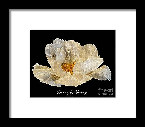 Diane Berry Framed Print featuring the photograph Paper Peony by Diane E Berry