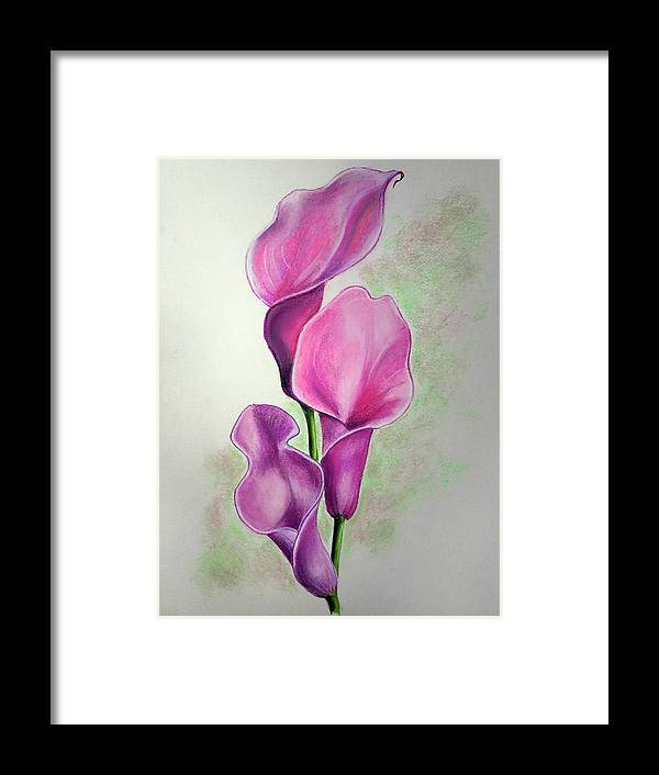 Pink Flower Framed Print featuring the drawing Pink Callas by Karin Dawn Kelshall- Best