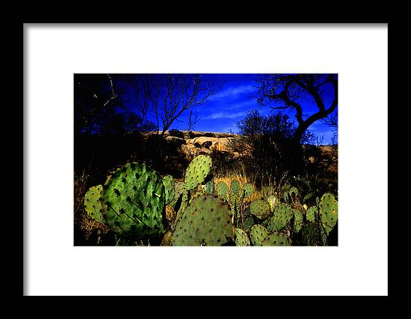 Landscapes Framed Print featuring the photograph Prickly Pears Enchanted Rock Texas by Tom Fant