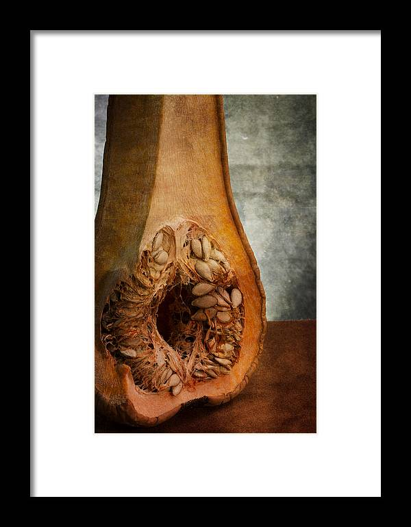 Anatomy Framed Print featuring the photograph Pumpkin Anatomy by Valentin Ivantsov
