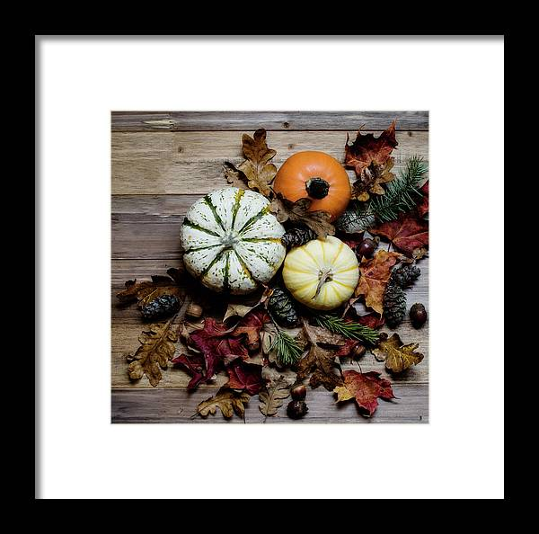 Thanksgiving Framed Print featuring the photograph Pumpkins by Rebecca Cozart