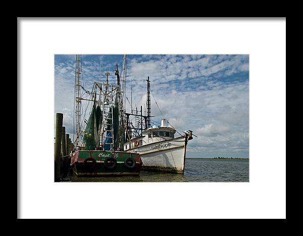 Color Photograph Framed Print featuring the photograph Ready And Waiting by Wayne Denmark