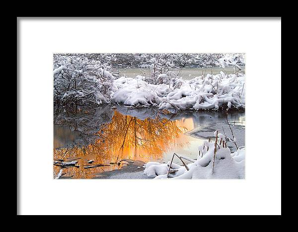 Reflections Framed Print featuring the photograph Reflections In Melting Snow by Neil Doren