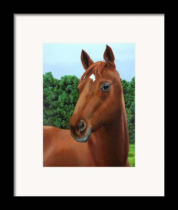 Horse Framed Print featuring the painting Retired Racer by Sandra Chase
