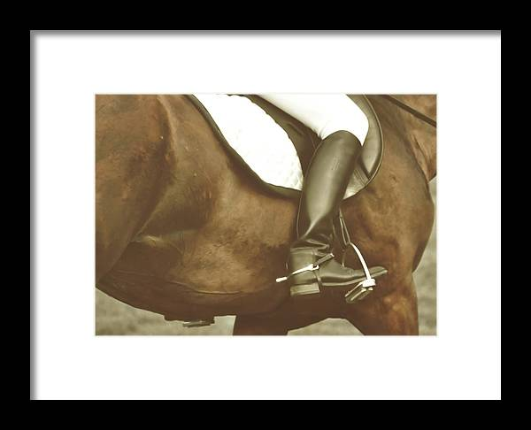 Horse Framed Print featuring the photograph Riding Aids Art by JAMART Photography