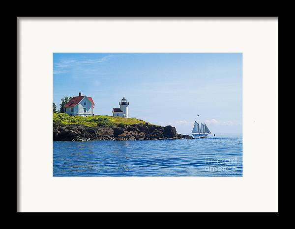 Sailing Framed Print featuring the photograph Sails Off Curtis Island Light by Neil Doren