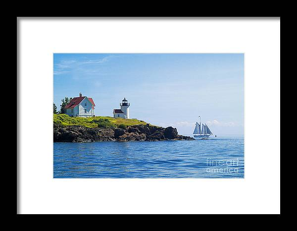 Sailing Framed Print featuring the photograph Sails Off Curtis Island Light by Neil Doren