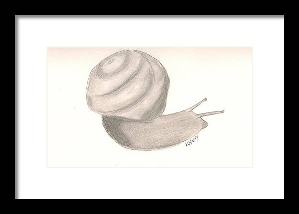 Snail Framed Print featuring the drawing Snail by Kristen Hurley