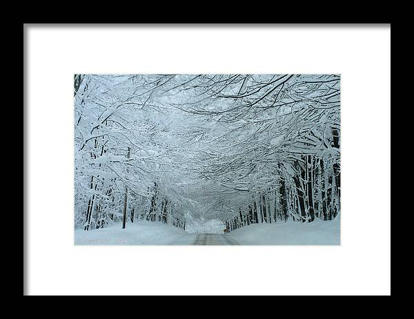 Blizzard Framed Print featuring the photograph Snow Tunnel by Carolyn Postelwait
