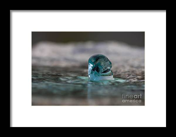 Water Framed Print featuring the photograph Spring by Marta Grabska-Press