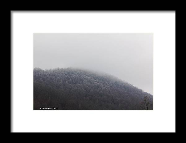 Trees Framed Print featuring the photograph Stormy Day by Carolyn Postelwait