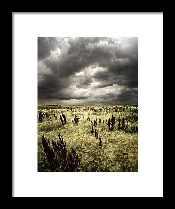Horizons Framed Print featuring the photograph Summer Storms by Phil Koch