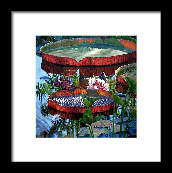 Water Lilies Framed Print featuring the painting Sunlight Shining Through by John Lautermilch