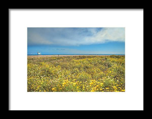 Venutra Framed Print featuring the photograph Sunny Side Up by Lynn Bauer