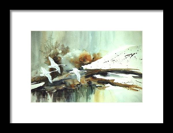 Swans  In Flight Framed Print featuring the painting Swans In Flight by Lynne Parker