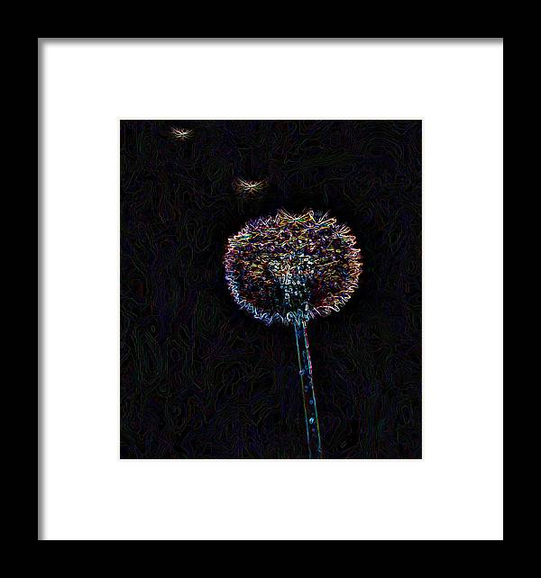 Dandelion And Seeds Framed Print featuring the photograph Taking Flight by Marilynne Bull