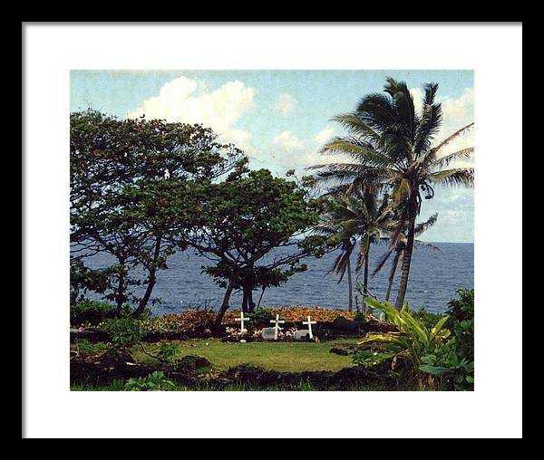 Palm Trees Framed Print featuring the photograph The Beginning by Jennifer Ott