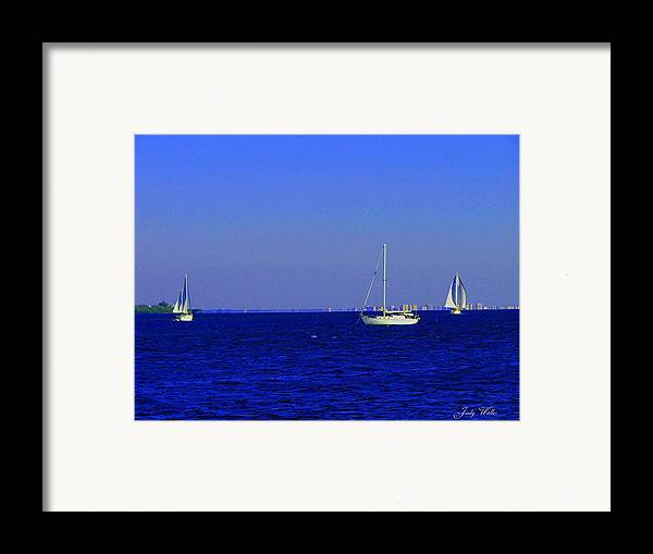 Blue Framed Print featuring the photograph There Are Three by Judy Waller