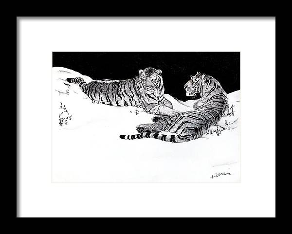 Tigers Framed Print featuring the drawing Tigers In The Snow by Hari Mohan