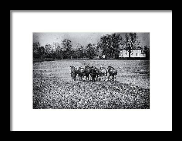 Agriculture Framed Print featuring the photograph Tilling The Fields by Tom Mc Nemar