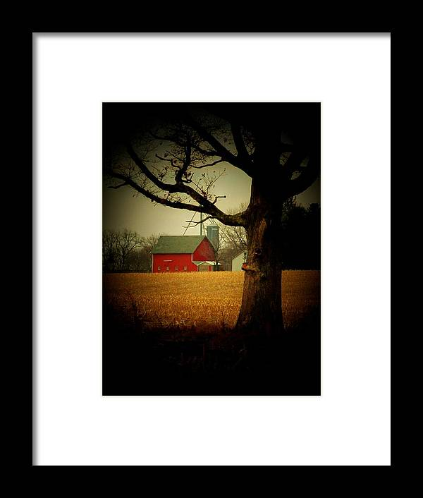 Tree Framed Print featuring the photograph Tree And Barn by Michael L Kimble