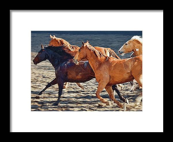 Horse Framed Print featuring the painting Wild Horses Running by Clarence Alford