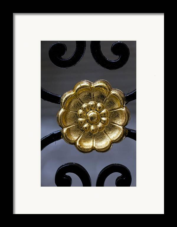 Abstractions Framed Print featuring the photograph Wrought Iron Gate Details by Robert Ullmann