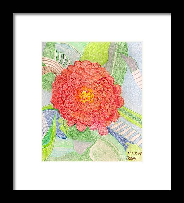 Framed Print featuring the drawing Zinnia by Rod Ismay