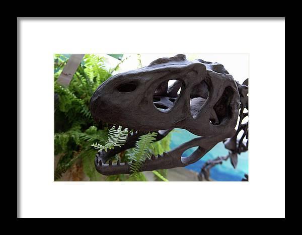 Centro De Investigaciones Paleontologicas Framed Print featuring the digital art Centro De Investigaciones Paleontologicas by Carol Ailles