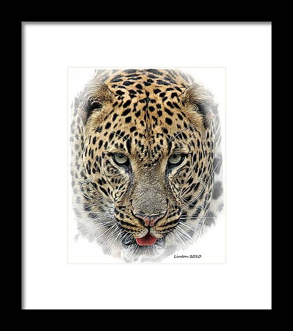African Leopard Framed Print featuring the digital art African Leopard by Larry Linton
